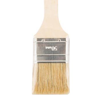 Image of Throwaway Brush