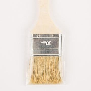 Image of Throwaway Brush